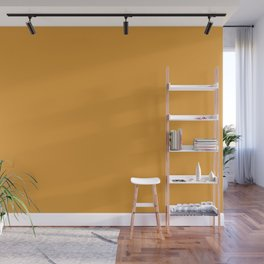 Dunn and Edwards 2019 Curated Colors Persimmon Orange (Pumpkin Orange) DE5293 Solid Color Wall Mural