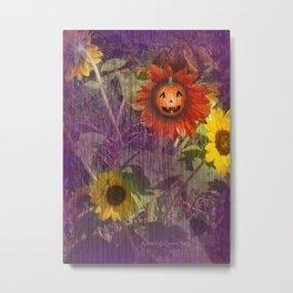 Sunny Pumpkin Metal Print