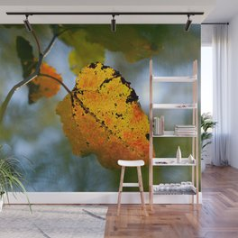 Yellow Aspen Leaf, Green Background. The Beauty Of The Autumn Season Wall Mural