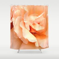 champagne Shower Curtains featuring Champagne Rose by Sweet Karalina
