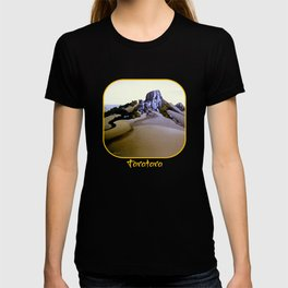The Sacred Place T-shirt