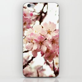 Front and Centre iPhone Skin
