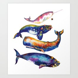 Whale Pyramid #4 - Watercolor Whales Art Print