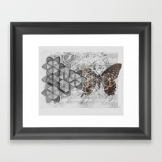 butterfly collage Framed Art Print
