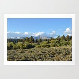 Sage Country Art Print