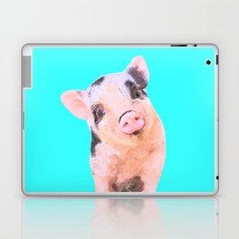 Baby Pig Turquoise Background Laptop & iPad Skin