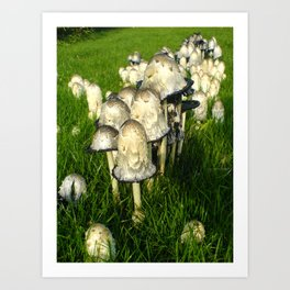 Mushrooms on grass Art Print