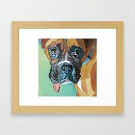 Drako the Rescued Boxer Framed Art Print