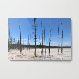 Surreal trees Metal Print