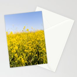 Bright yellow spring flowers pattern blue sky photography Stationery Cards