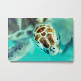 Cute Little Sea Turtle Metal Print