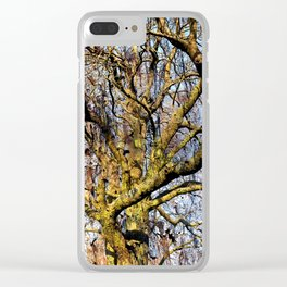 Magic Dream of a Tree Clear iPhone Case