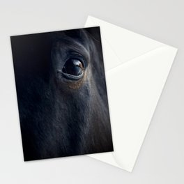 The eye of the horse Stationery Cards