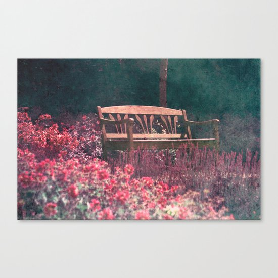 rêve bancaire Canvas Print