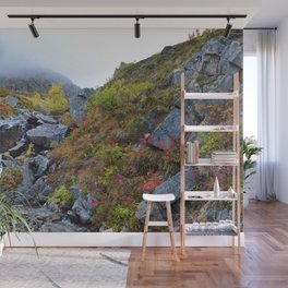 Independence Mine Waterfall - Alaska Wall Mural