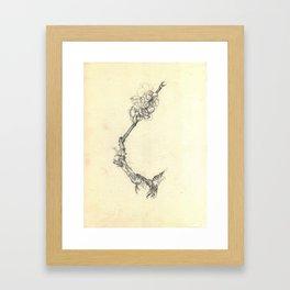 Blossoming branch Framed Art Print