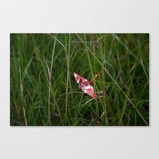 Crane 003 Canvas Print