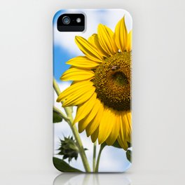 Sunflowers and clouds iPhone Case