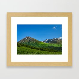 Alaskan Summer Greens - 1 Framed Art Print