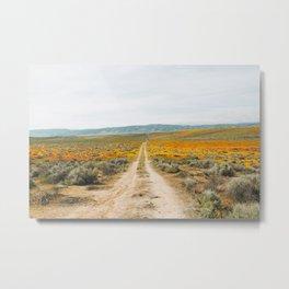 Road Less Traveled Metal Print