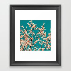 willow catkin II Framed Art Print
