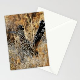 ROADRUNNER 2 Stationery Cards