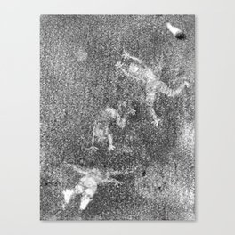 Shadow Dancers, Second Edition Ghost Canvas Print