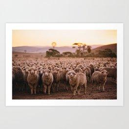 Dinner Time Sheep Art Print
