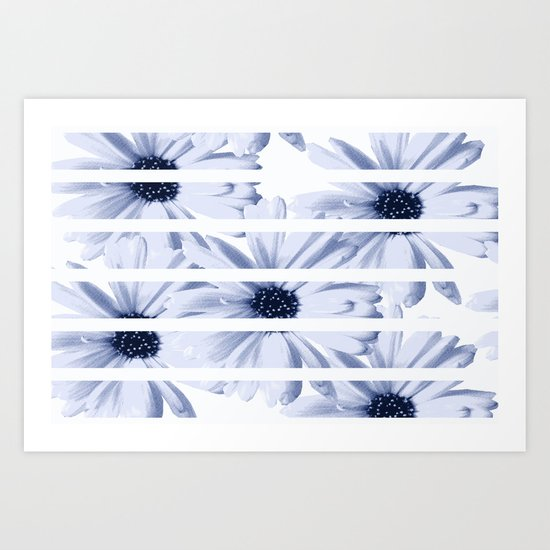 Light Blue Daisies with White Stripes Art Print