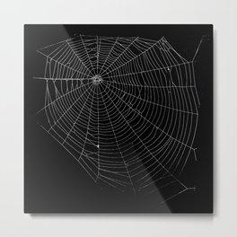 Spiders Web Metal Print