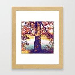 Autumn oak Framed Art Print