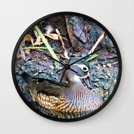 Lady Wood Duck Wall Clock
