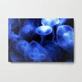 Jelly fish Meduse Metal Print