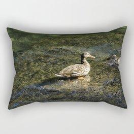 Female Mallard in the Shallows Rectangular Pillow