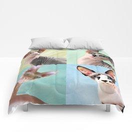 Sphynx Grid Comforters