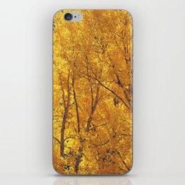 Colorado Gold iPhone Skin