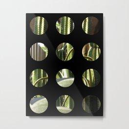 Cactus Garden Art Circles 2 Metal Print
