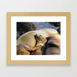 Snuggle Baby Framed Art Print