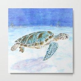 Sea turtle underwater Metal Print