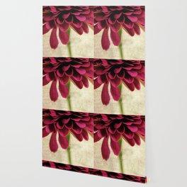 pétales de fleurs Wallpaper