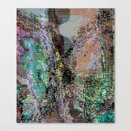 bad frame_1 Canvas Print