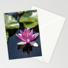 Pink Water lily at the pond Stationery Cards