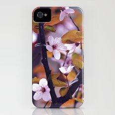 Cherry Blossom 2 iPhone (4, 4s) Slim Case