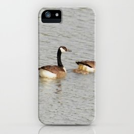 Canadian Geese Family iPhone Case