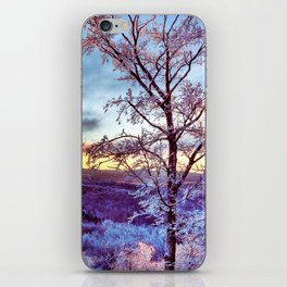 Icy Forest Awakens iPhone Skin