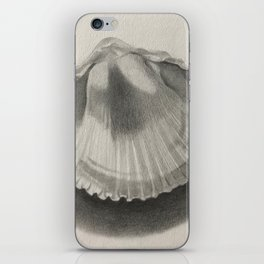 Cockle Shell iPhone Skin