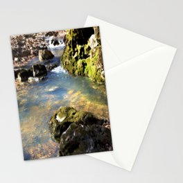 Alone in Secret Hollow with the Caves, Cascades, and Critters, No. 8 of 20 Stationery Cards