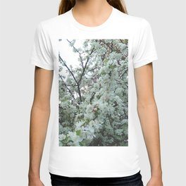 flower and light - White flower 5 T-shirt