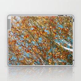 Leaves at Matilda Bay Laptop & iPad Skin