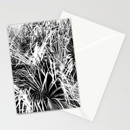 Palm Fronds In Black and White Abstract Photography Stationery Cards